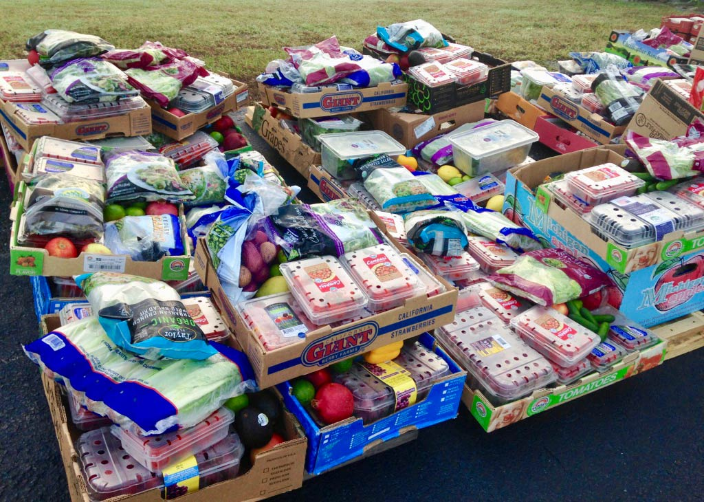 A collection of fruits and vegetables on skids in a parking lot. Items are packed in pastic bags and containers.
