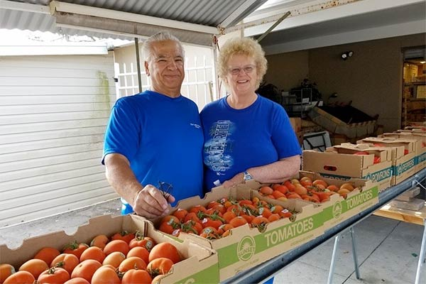 Man and women in blue shirts in front of boxes of tomatoes