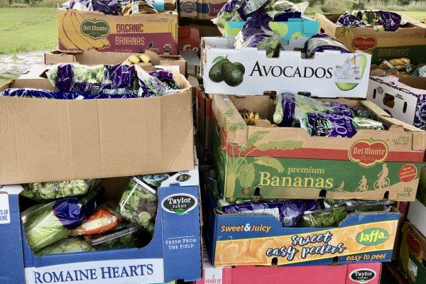 Boxes of fresh produce